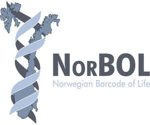 NorBol