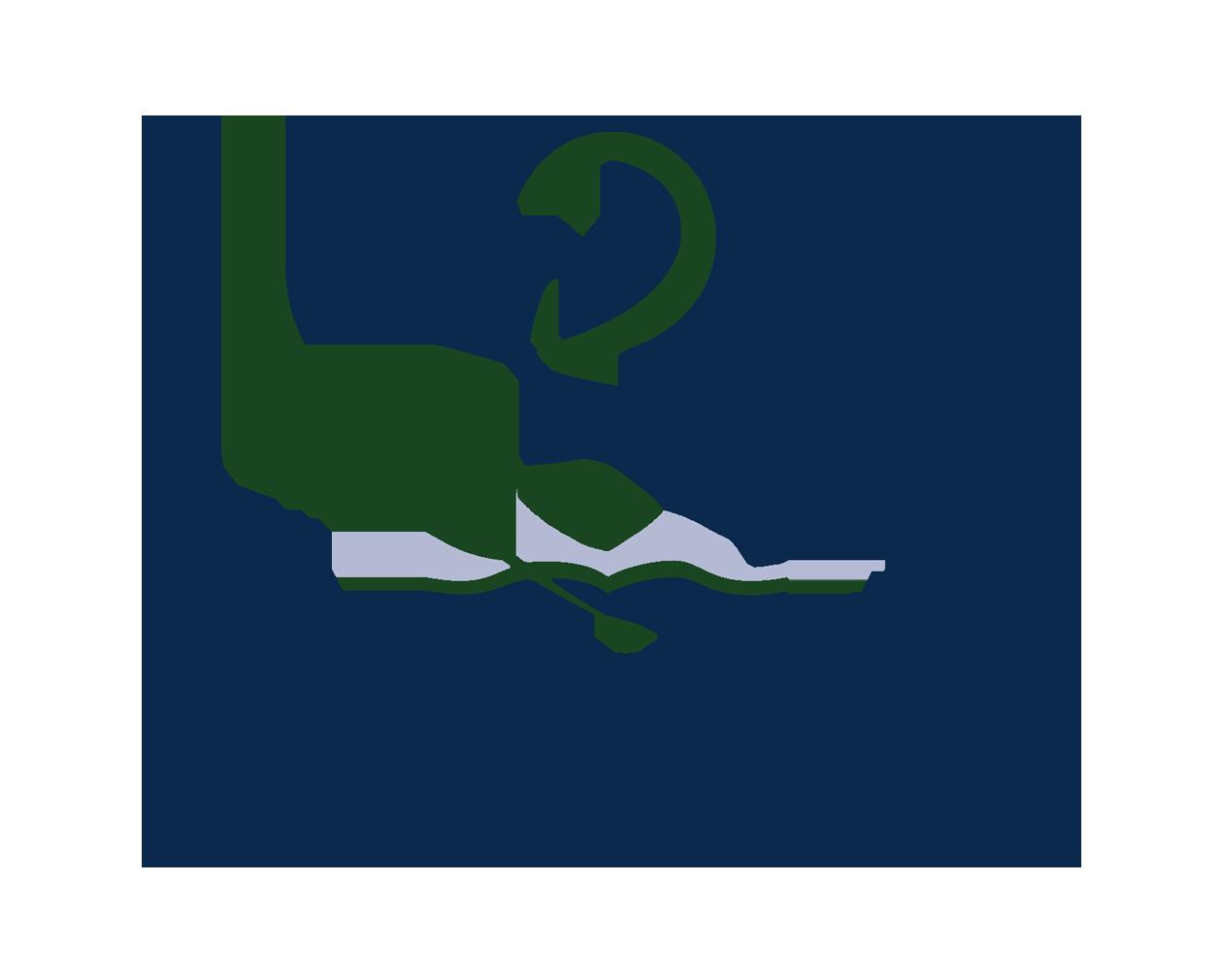 Princess Nourah Bint Abdulrahman University (PNU)